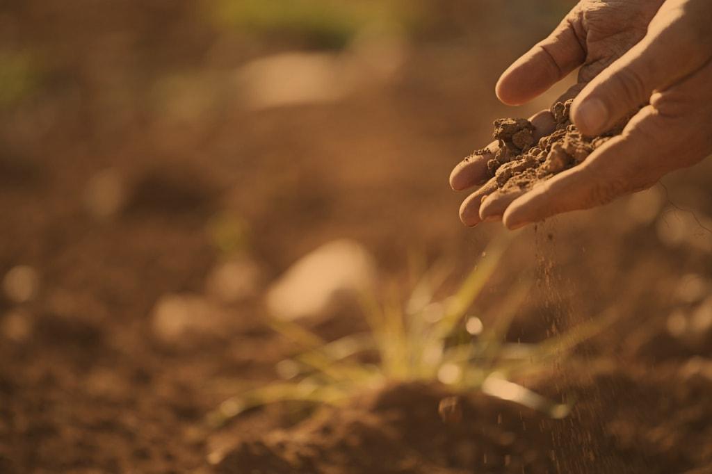 Manual soil test